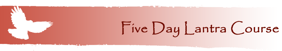 Five Day Course Banner | Welsh Hawking Centre